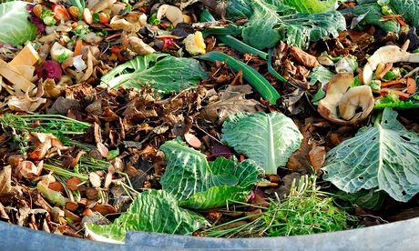Organic matter ready for composting