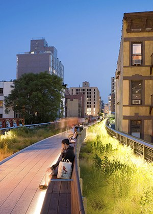 High Lines and park life: why more green isn't always greener for cities Transforming old industrial areas into urban woodland may look nice but can be conterproductive in the long run