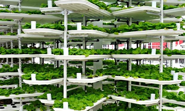 Vertical Farming Building Vertical Farming Overcomes a