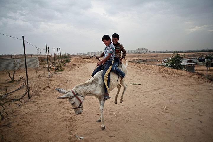 20 Photos: Palestinian Bedouin children enjoy a donkey ride around the Gaza Strip