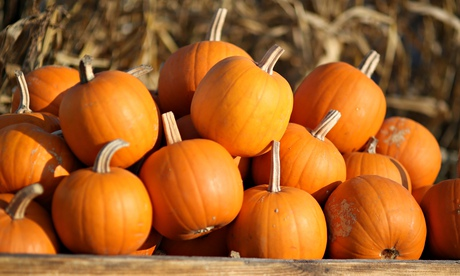 No chills on Halloween as Britains year of high temperatures continues...