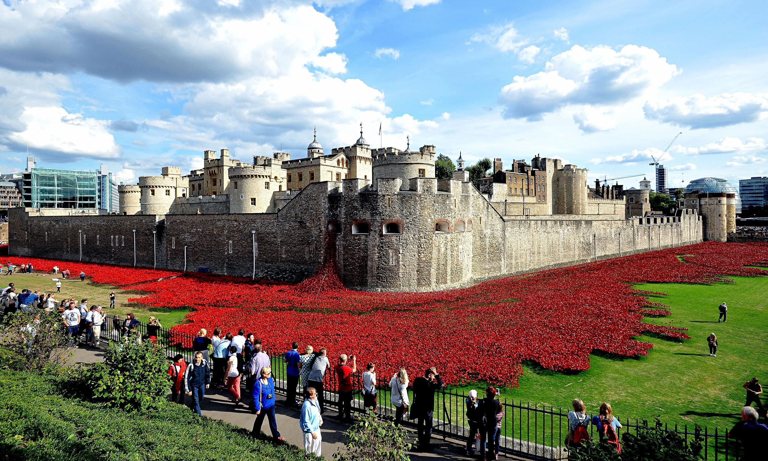 Art Installation Tower of London Poppies Tower of London Poppies 'this