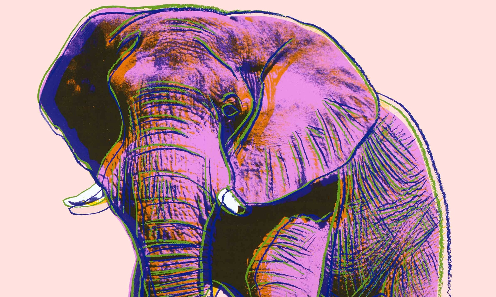 D Art Exhibition London : Andy warhol s psychedelic endangered animals in pictures