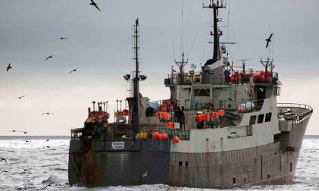 Sea Shepherd calls for Australian intervention in Southern Ocean standoff