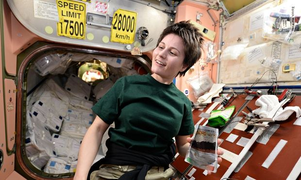 First sex in space