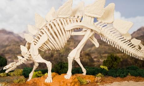 MakerBot's 3D-printable stegosaurus skeleton has classrooms in mind