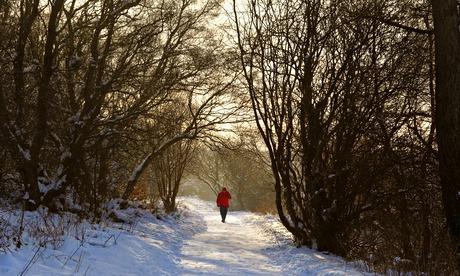 A winter walk alone