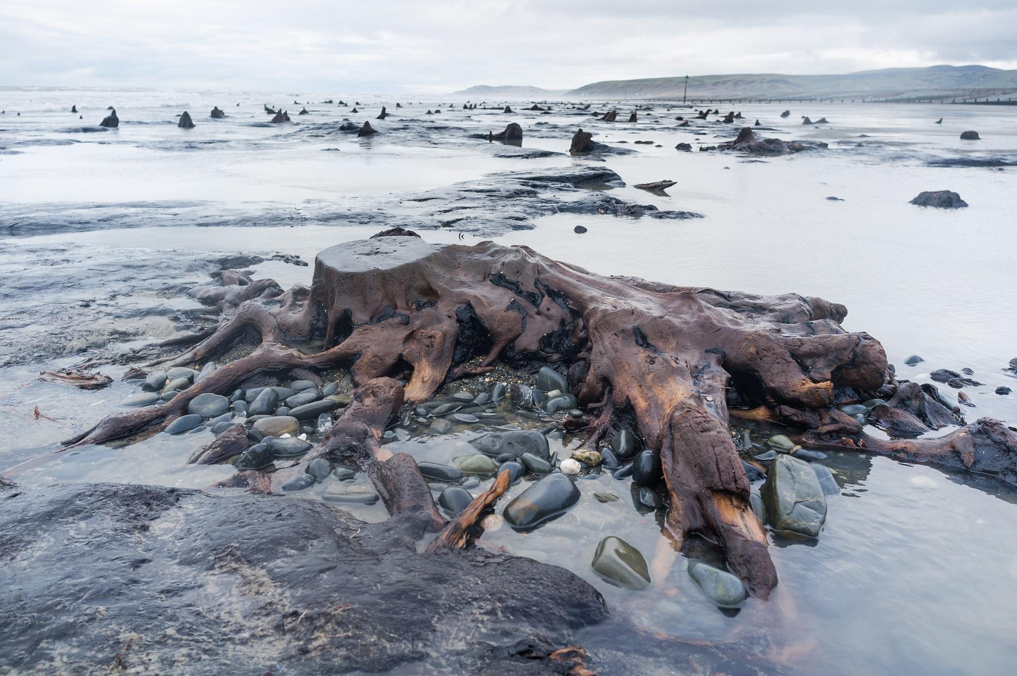 Фото с деревенских пляжей 3 фотография