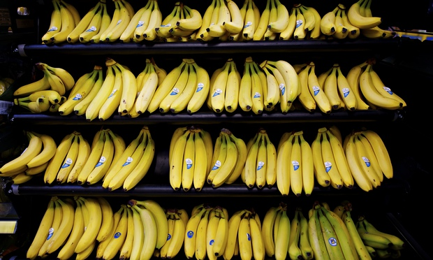 just how much does it cost growers to give us bananas at