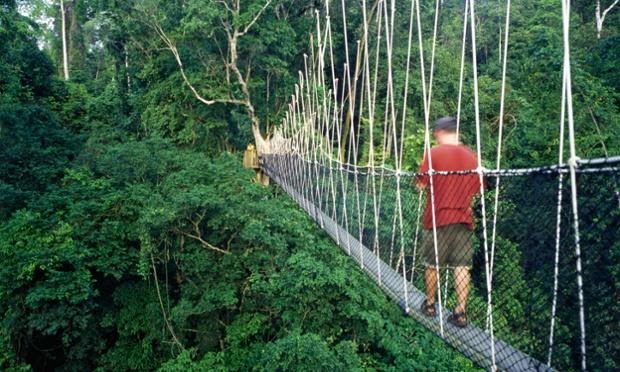 Canopy walkway, Kakum National Park, Ghana