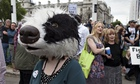 An animal welfare campaigner protesting against the badger cull