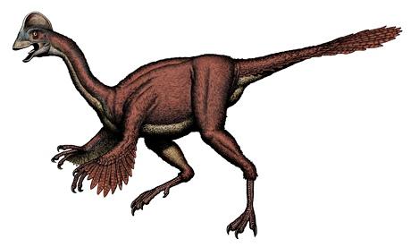 Artist's impression of the new oviraptorosaurian dinosaur species Anzu wyliei