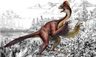 Anzu wyliei – a bird-like dinosaur nicknamed the 'chicken from hell'