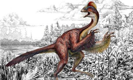Anzu wyliei – a bird-like dinosaur nicknamed the 'chicken from hell'
