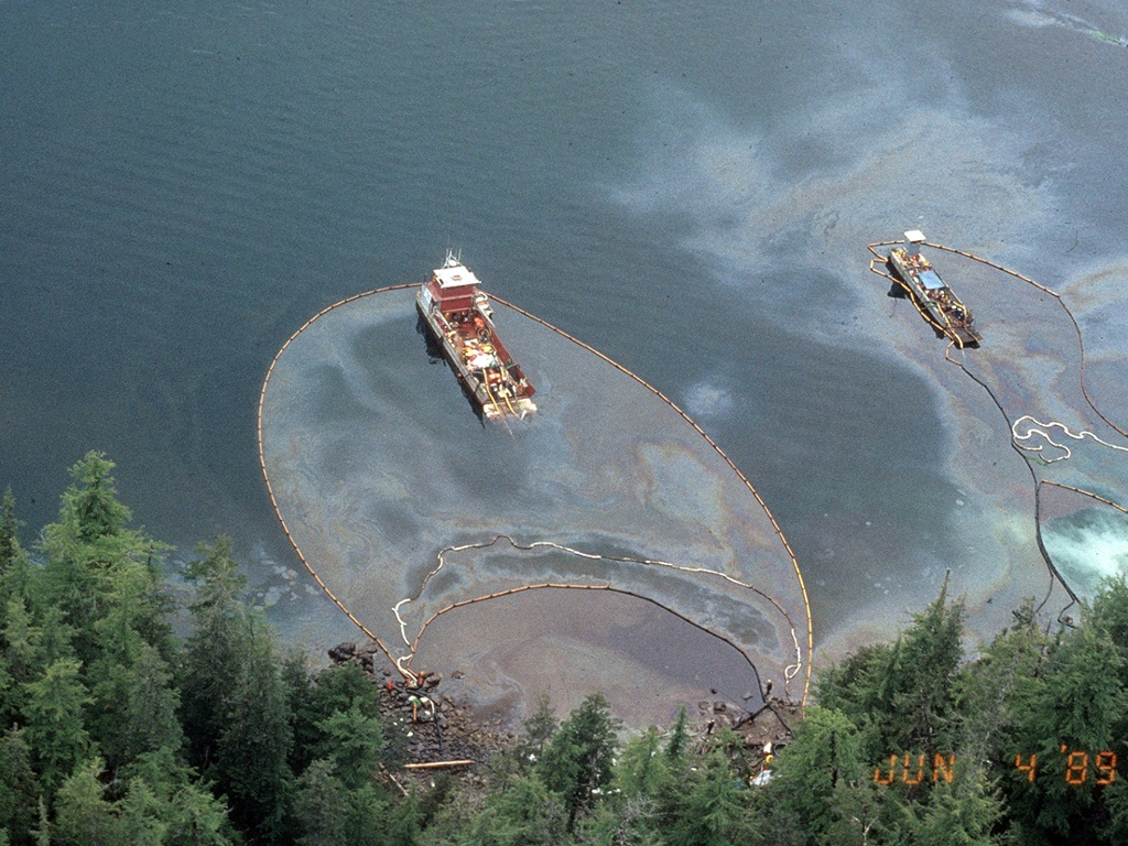 the effects of the exxon valdez oil spill on the environment Low-level oil exposure leads to later heart defects, weaker swimming and reduced survival september 8, 2015 for 25 years, methodical research by scientists has investigated the effects of the exxon valdez oil spill in 1989 on alaskan communities and ecosystems.
