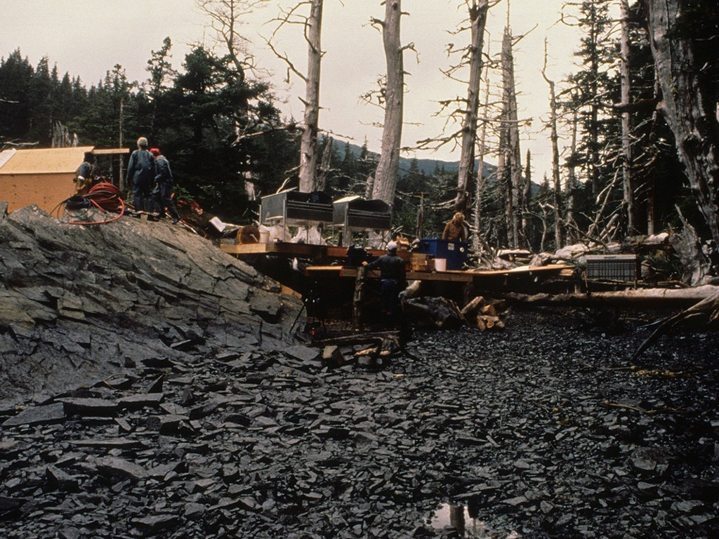 the effects of the exxon valdez oil spill on the environment On march 24, 1989 the oil tanker exxon valdez ran aground on bligh reef in prince william sound, alaska, spilling an estimated 11 million gallons of crude oil across 1,300 miles of coastline - a catastrophic event that lead to one of the most thorough examinations of the effects of oil on the environment.