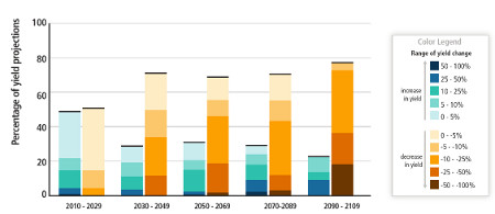 Summary of projected changes in crop yields, due to climate change over the 21st century.