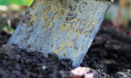 Alys Fowler: soil