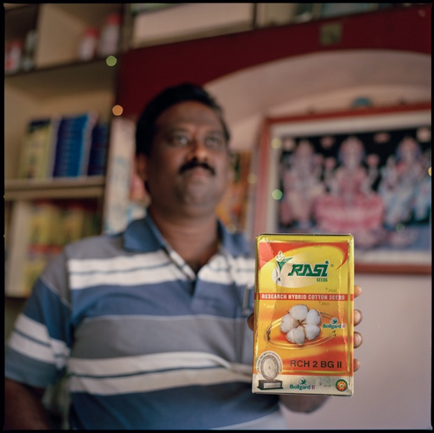 A shopkeeper in Yavatmal, Maharashtra, India, holding up a box of GM Bollgard cottonseeds.