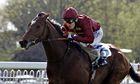 Arod, ridden by Jamie Spencer, winning the Injured Jockeys Fund Maiden Stakes at Windsor