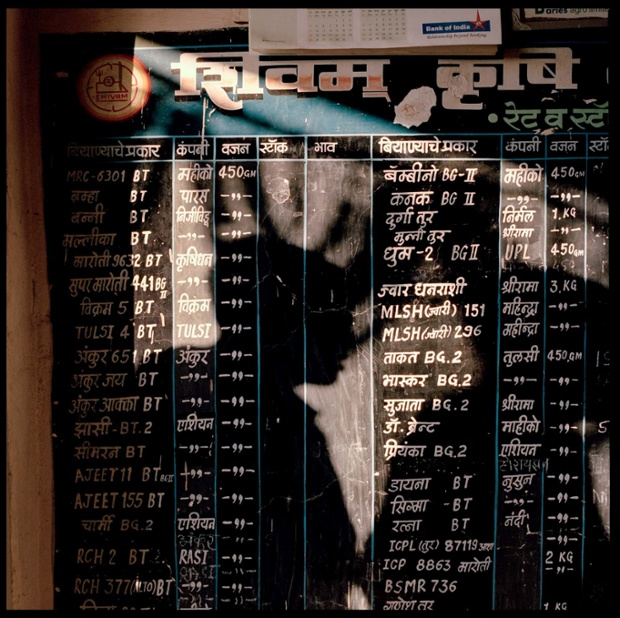 A black board with a list of all the GM Bt seeds available for sale in a seed shop in Yavatmal, India