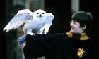 Hedwig and Harry Potter