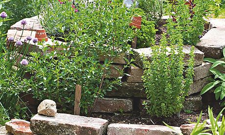 Gardens: herbs