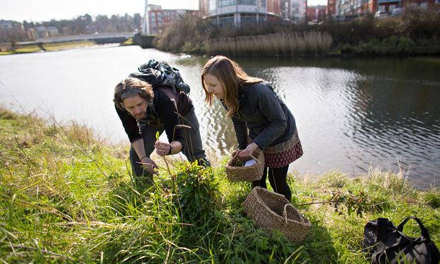 Urban foraging: how to dig for your dinner in the city and suburbs