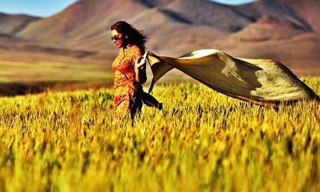 Facebook: Iranian women remove hijab