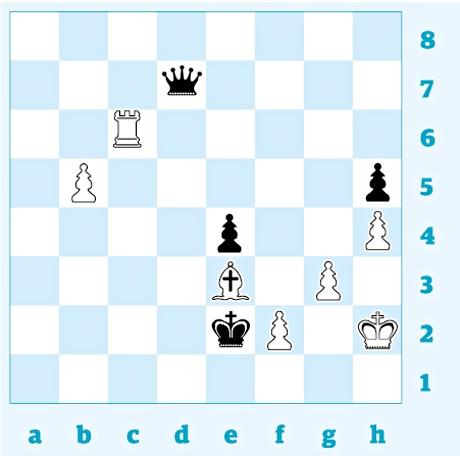 Chess 3358