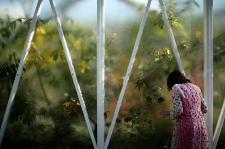 A visitor looks through the glass of a greenhouse at the Chelsea Flower Show in London. The prestigious gardening show opens to the public on 20 May, and features hundreds of stands and exhibition gardens.