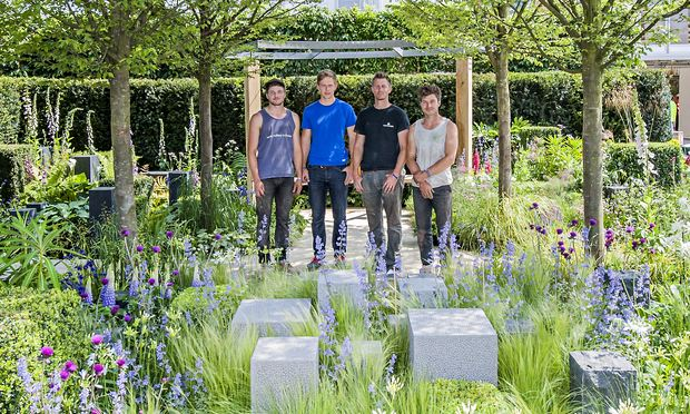 Chelsea flower show bugg 39 s eye view is gardening gold life and style the guardian - Chelsea flower show gold medal winners ...