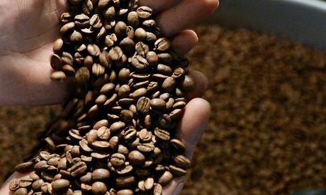 Ikawa coffee roasting machines are set to create a stir