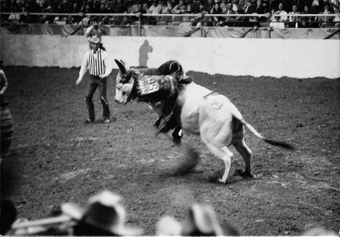 Dennis Hopper Shots: Dennis Hopper Photography Untitled (Riding Bull), 1962