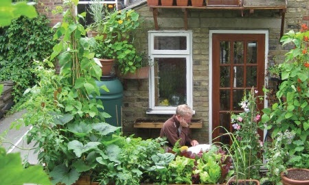 Live better vert veg