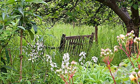 Gardens: Spencers seat