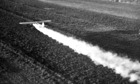 DDT spraying in 1947
