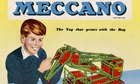 Meccano fallon diary