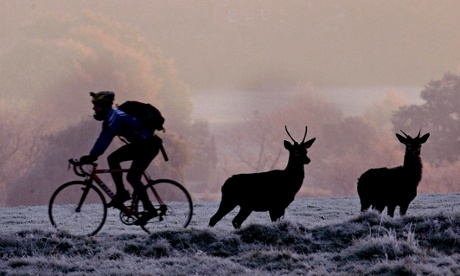 Cycling in Richmond Park, south-west London. Photograph: Toby Melville/Reuters