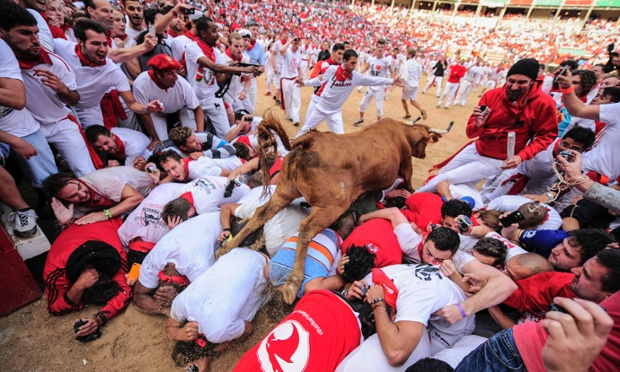 A cow jumps over the.....The bull ring at the San Fermin festival, in Pamplona during the eight-day bull running event in Spain