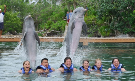 Tourists pose with dolphins at a Delphinus marine park in Mexico