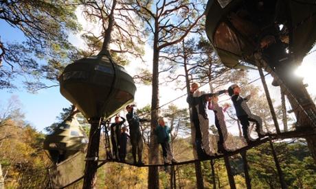 Preikstolen Tree camp