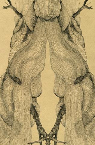 Illustration by Bethany White