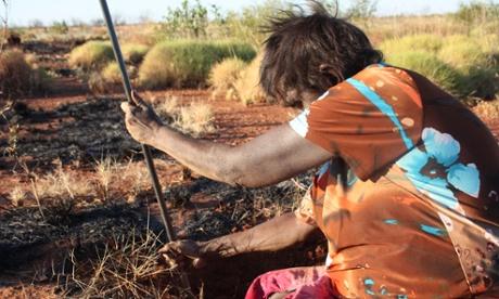 Eva digging potatoes, Balgo, Western Australia