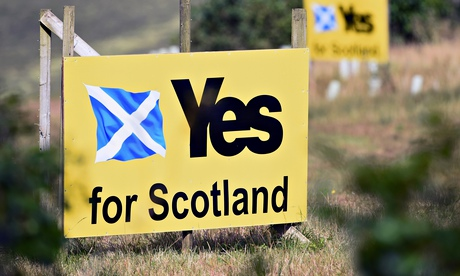 Yes campaign placards