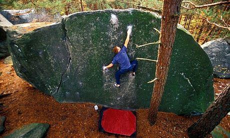 Man in blue shirt climbing a green boulder.