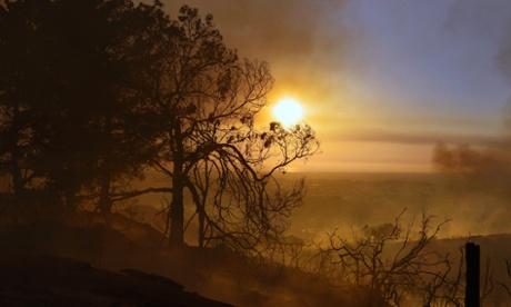 Тліючі дерева закривають вид на захід Сонця на вершині пагорба в Сан-Маркос, Сан-Дієго, штат Каліфорнія, США