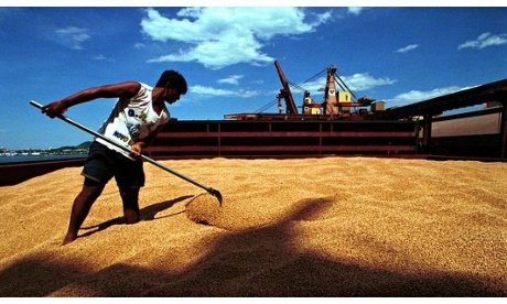The rise of south-south trade: a challenge for sustainable agriculture
