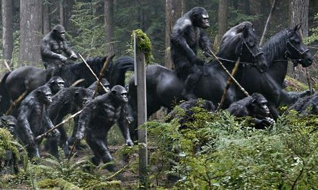 2014, DAWN OF THE PLANET OF THE APES