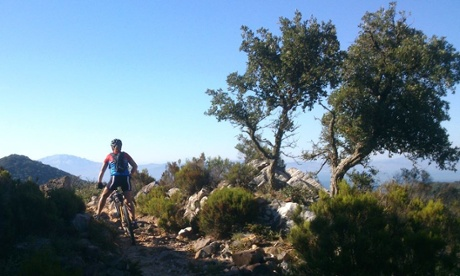Mountain biking, Los Alcornocales natural park, Tarifa